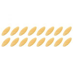20-semi-di-cicoria-bis